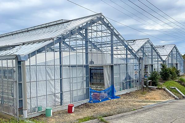 ハウス・栽培システム事業2